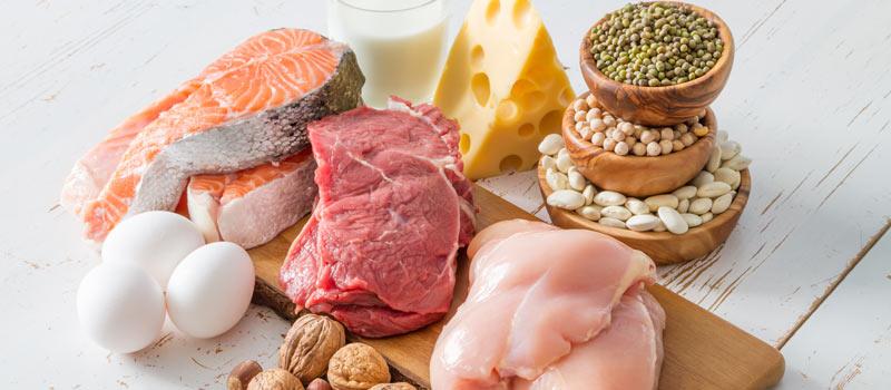 Πρωτεΐνες στη διατροφή και μυικής μάζας