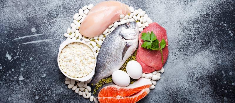 Πρωτεΐνες στη Διατροφή για γράμμωση